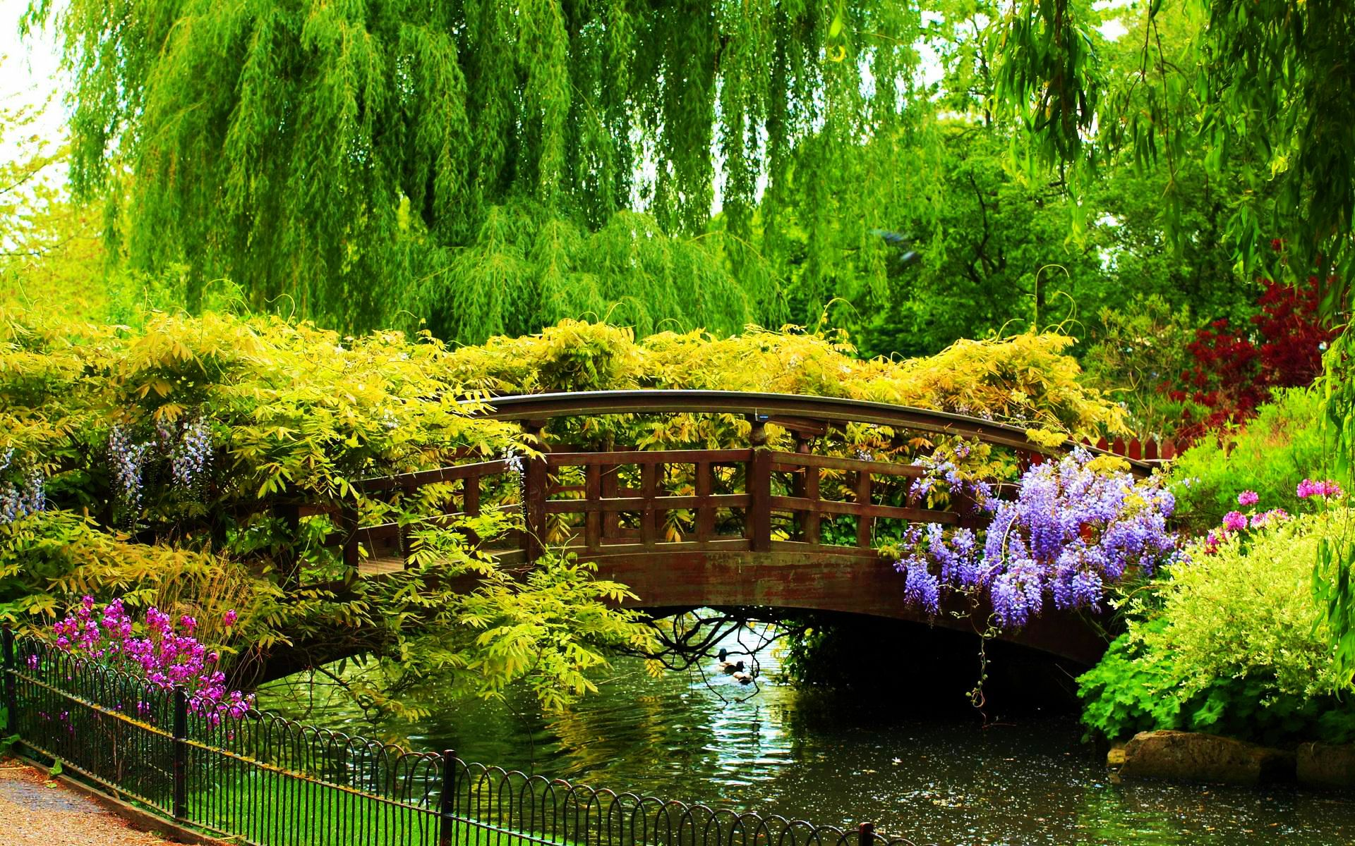 Isabella Plantation_Richomd_Park_London